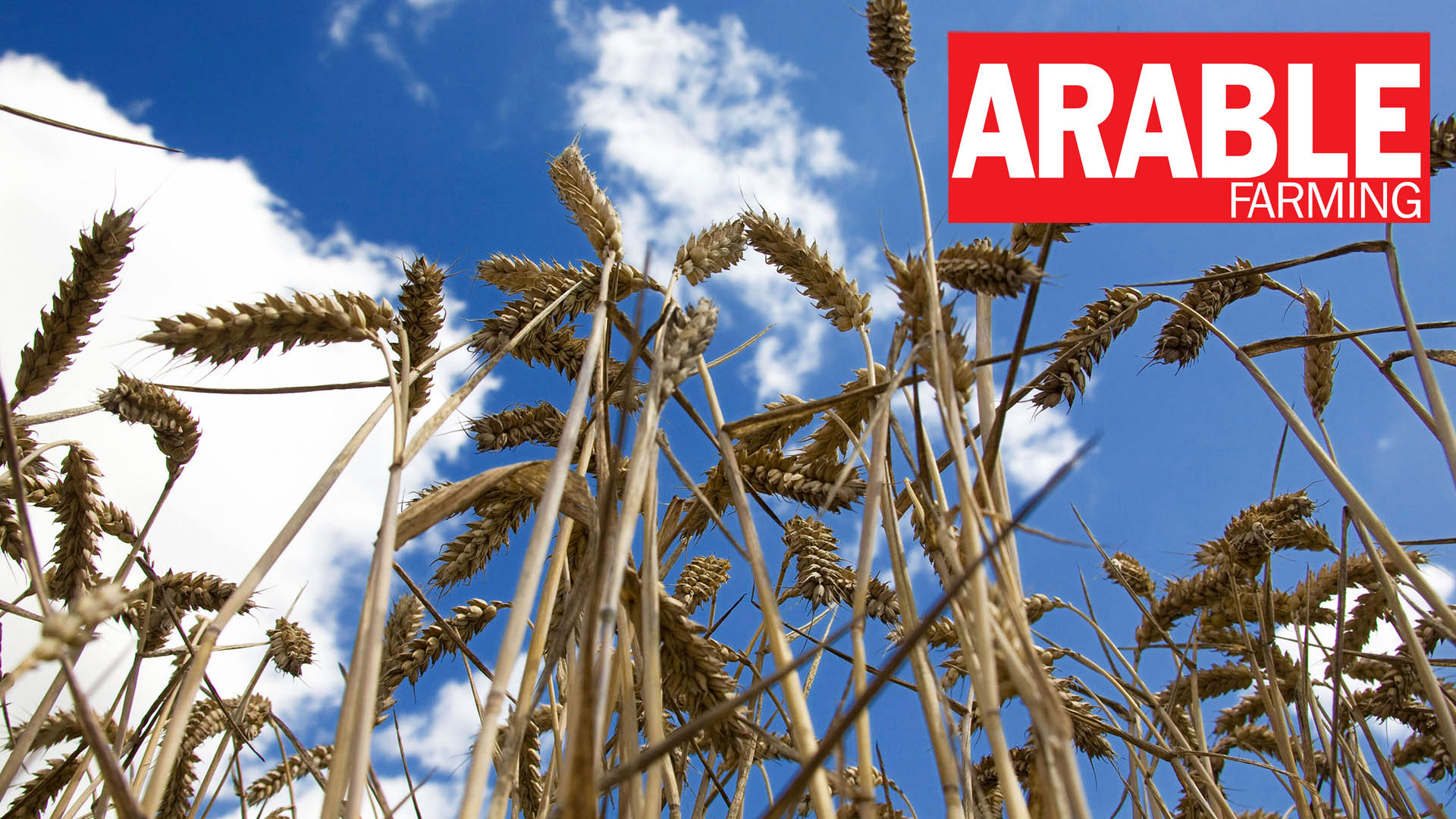 Arable Farming